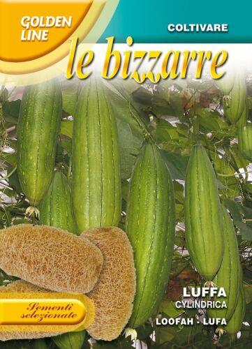 Grow your own sponge! Franchi Seeds Loofah Luffa Cylindrica seeds