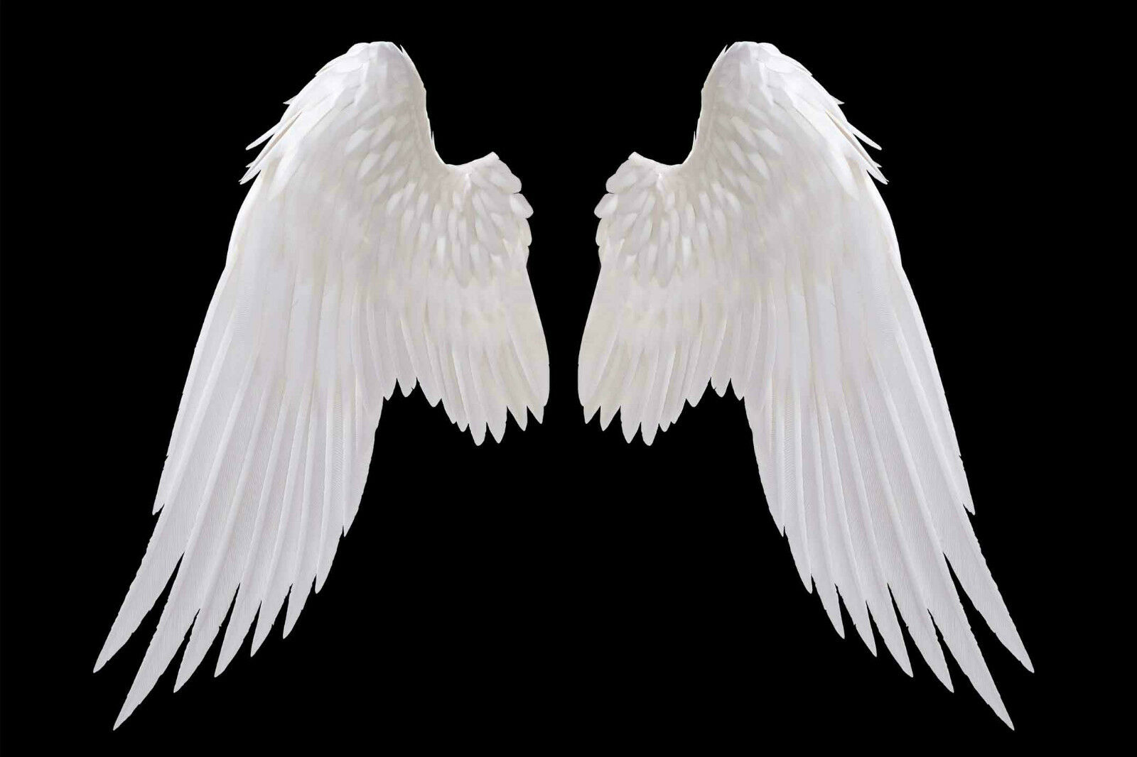 STUNNING Angel Wings Abstract Canvas 627 Quality Home Decor A1