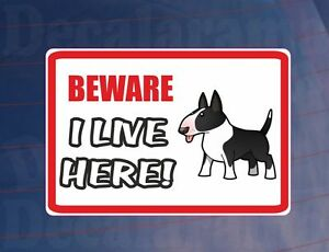 BEWARE-I-LIVE-HERE-BULL-TERRIER-House-Home-Window-Door-Porch-Printed-Sticker