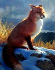 """Nancy Glazier """"Backlit Beauty"""" Fox Print  11"""" x 14"""""""
