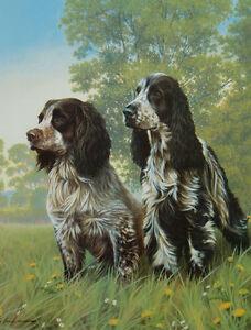 Nigel-Hemming-COCKER-TWO-Working-amp-Show-Cocker-Spaniels-Gun-Dogs-Cockers-Art
