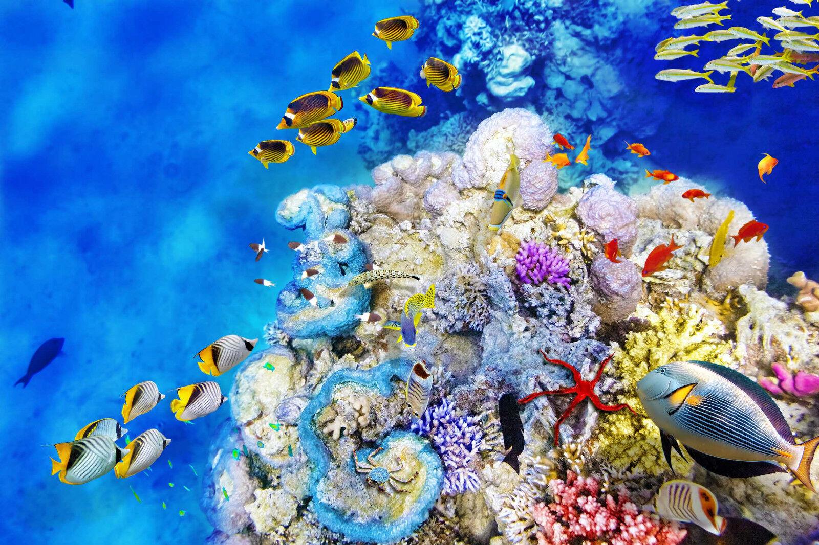 3D Underwater World 346 Décor Mural Murale De De De Mur De Cuisine AJ WALLPAPER FR   Qualité Et Quantité Assurée  2e8c8b