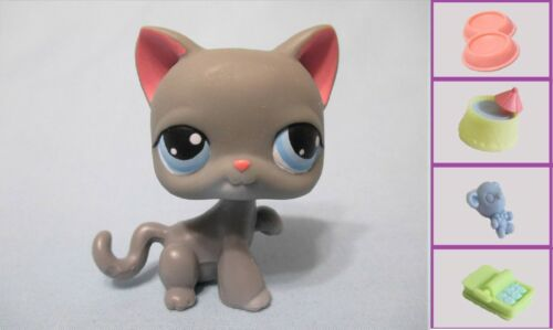 Littlest Pet Shop Cat Kitty Paw Up 74 and Free Accessory Authentic Lps