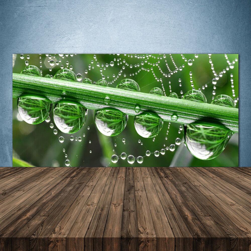 Vidrio Templado Cocina salpicaduras 140x70 Araña gotas de rocío Floral