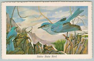 Idaho-State-Bird-Mountain-Bluebird-Perches-High-In-Mountain-1968-Artist-Ken-Haag