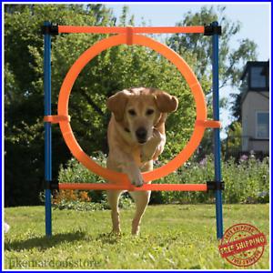DOG AGILITY COURSE 12-piece Set Fun Sport Complete Outdoor ...
