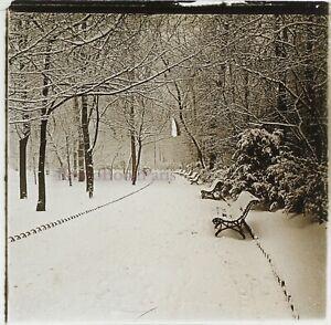 Paesaggio-Invernale-Giardino-Neige-c1910-Foto-Stereo-Placca-Da-Lente-VR12f