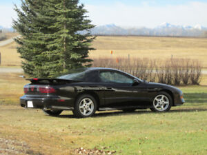 Trans Am only 42000 kms - all original