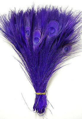 "PURPLE Feathers 10-12/"" Bridal//Halloween//Dance 25 Pcs BLEACHED PEACOCK TAILS"