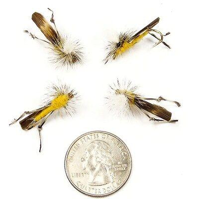 Parachute Grasshopper Fly Fishing Flies - Set of 4 Size 10 -Trout Bass Panfish