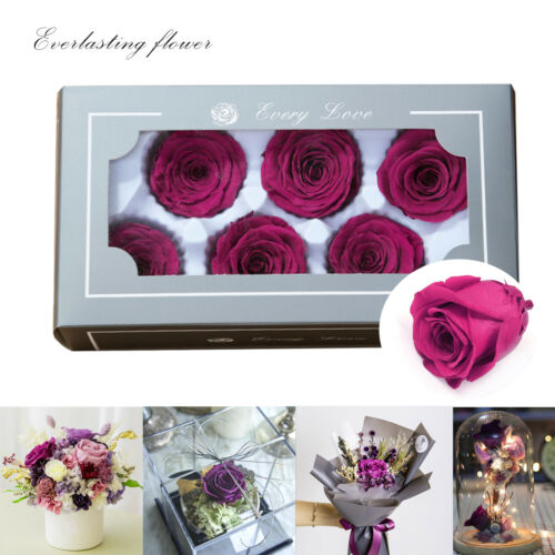 Naturels préservés Fresh Fleur Rose St Valentin Cadeau Mariage Décorations