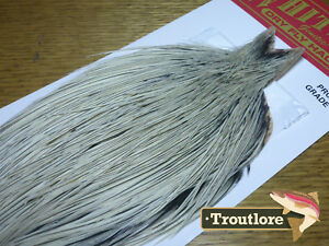 WHITING-FARMS-DRY-FLY-CAPE-SILVER-BADGER-WHOLE-NEW-PRO-GRADE-FLY-TYING-NECK