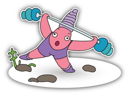 """Funny Starfish Gym Car Bumper Sticker Decal /""""SIZES/'/'"""