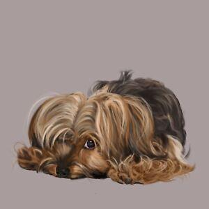 Yorkshire-Terrier-Yorkie-Asleep-with-One-Eye-Open-Fine-Art-Print