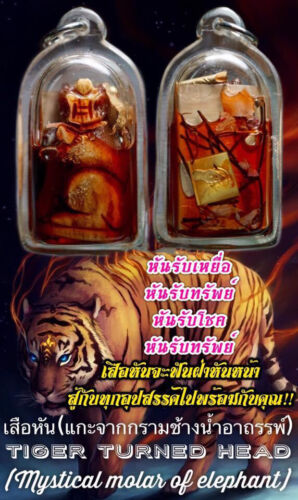 Thai Amulet Tiger turn Phra Ajarn O Protect Attract Charm Luck Money Rich Wealth