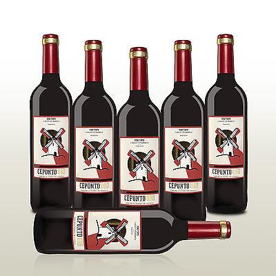 Toller Tempranillo aus Spanien, 6 Flaschen Wein, Rotwein trocken
