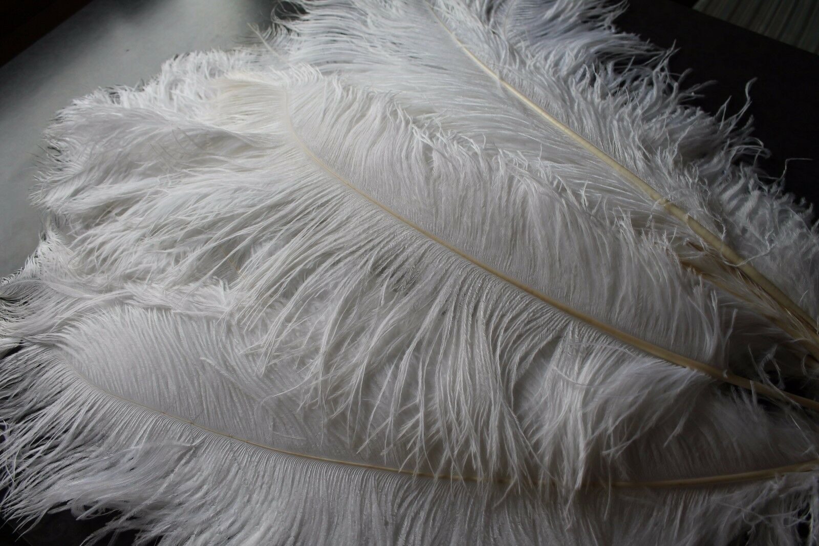 10 piec., Weiß Ostrich Feathers, 70-80 cm long, 20-30 cm wide