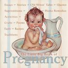 The Little Big Book of Pregnancy by Katrina Fried (Hardback, 2002)