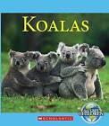 Koalas by Josh Gregory (Paperback, 2016)