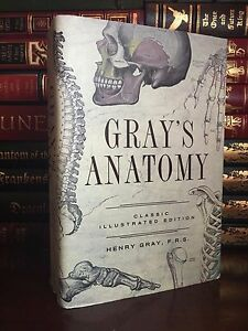 Snap Grey S Anatomy Medical Book Hardback With By VonBrandenburgs
