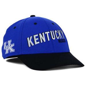 new product 1142a 2900d Image is loading Kentucky-Wildcats-Nike-NCAA-Best-L91-Swooshflex-Cap-