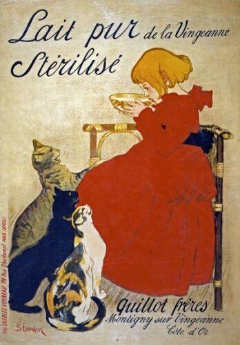 AV53 Vintage French Lait pur stérilisé Cat Advertisement Milk Poster A1//A2//A3//A4