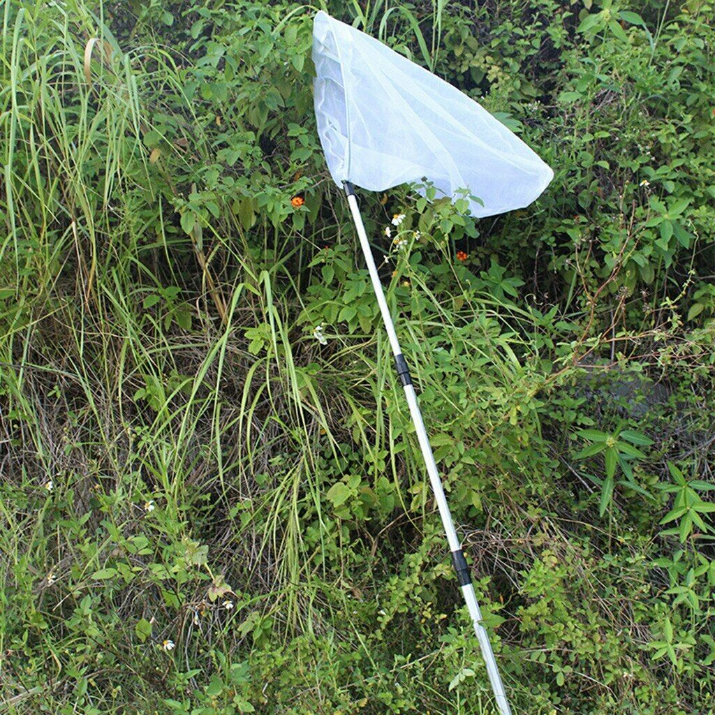 Aluminum Alloy Pole Handle Telescopic Fishing Butterfly Dragonfly Insect Net