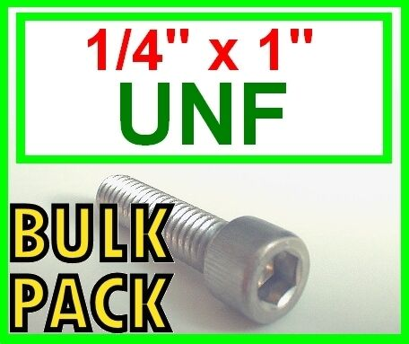 """Socket Caps 1//4 x 1/""""   50 Pack Stainless Steel UNF Imperial Allen Bolts"""