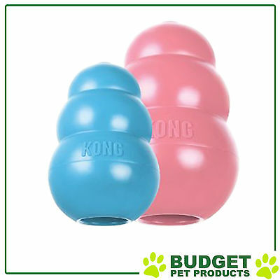 Kong Puppy Large - Various Color