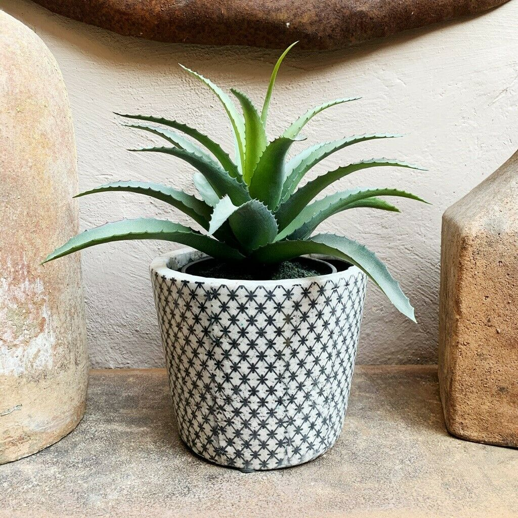Artificial Aloe Vera Plant Realistic Vase Floral Arrangement For Sale Ebay