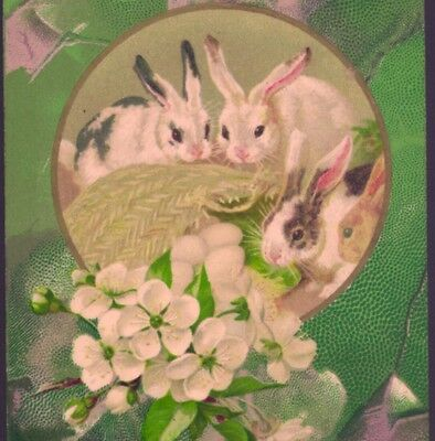 SPOTTED EASTER RABBITS WITH PEAR BLOSSOMS,PRETTY SPRING GREENS,PRE-1907 POSTCARD