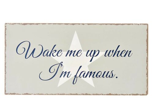 Sign-I /'M Famous-Shabby Chic Metal Sign Wall Art Deco Wall Object in Grey