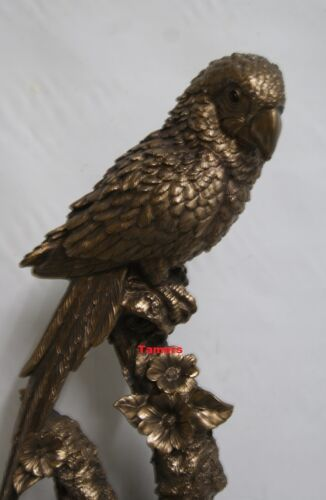 Reflections Detailed Large 40cm Bronzed Parrot Bird Statue Ornament BNIB