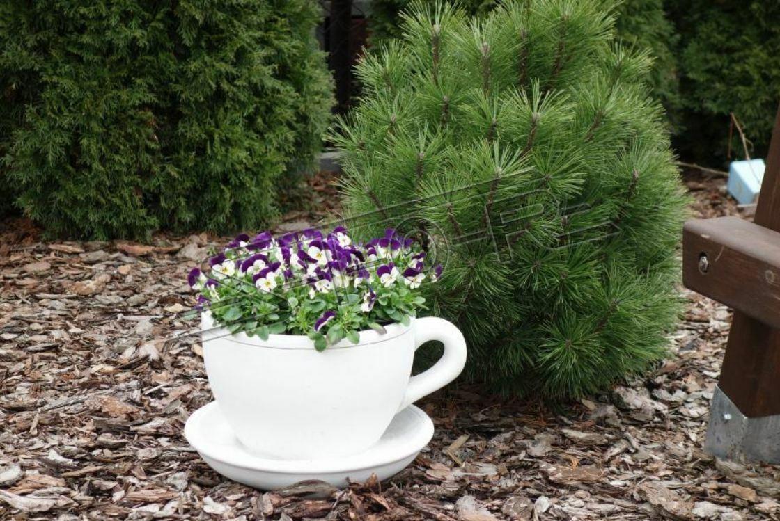 Macetas Planta Cubo Decoración Figura Macetas Jardín Floreros Taza de Café