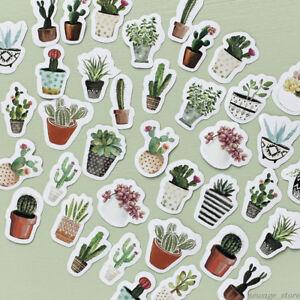 45PCS-Succulent-Plants-Sticker-Cactus-Label-Scrapbooking-Envelope-Gift-DIY-Decal