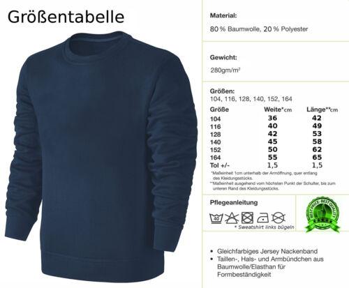 Kinder Wende Pailletten Sweatshirt Tiger Streichel Pullover Blau