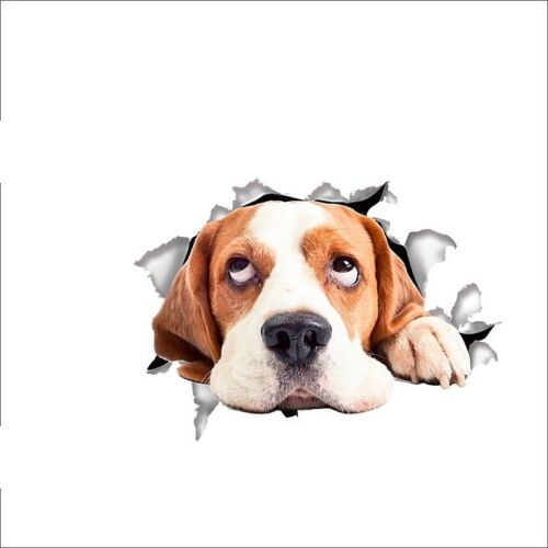 """Refrigerator Decal 8.25/"""" x 6/"""" BEAGLE DOG 3D Removable Die-cut Wall #14149"""