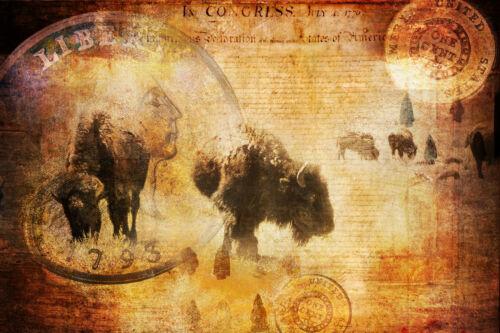 BUFFALO PATRIOTIC GOLD COINS CONSTITUTION ARROWHEAD AMERICAN SPIRIT COWBOY OLD