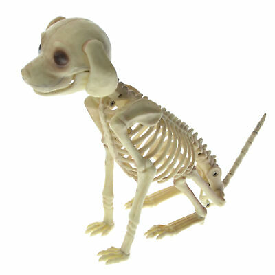 Halloween Animal Dog Skeleton Bones Prop Party Home Garden ...