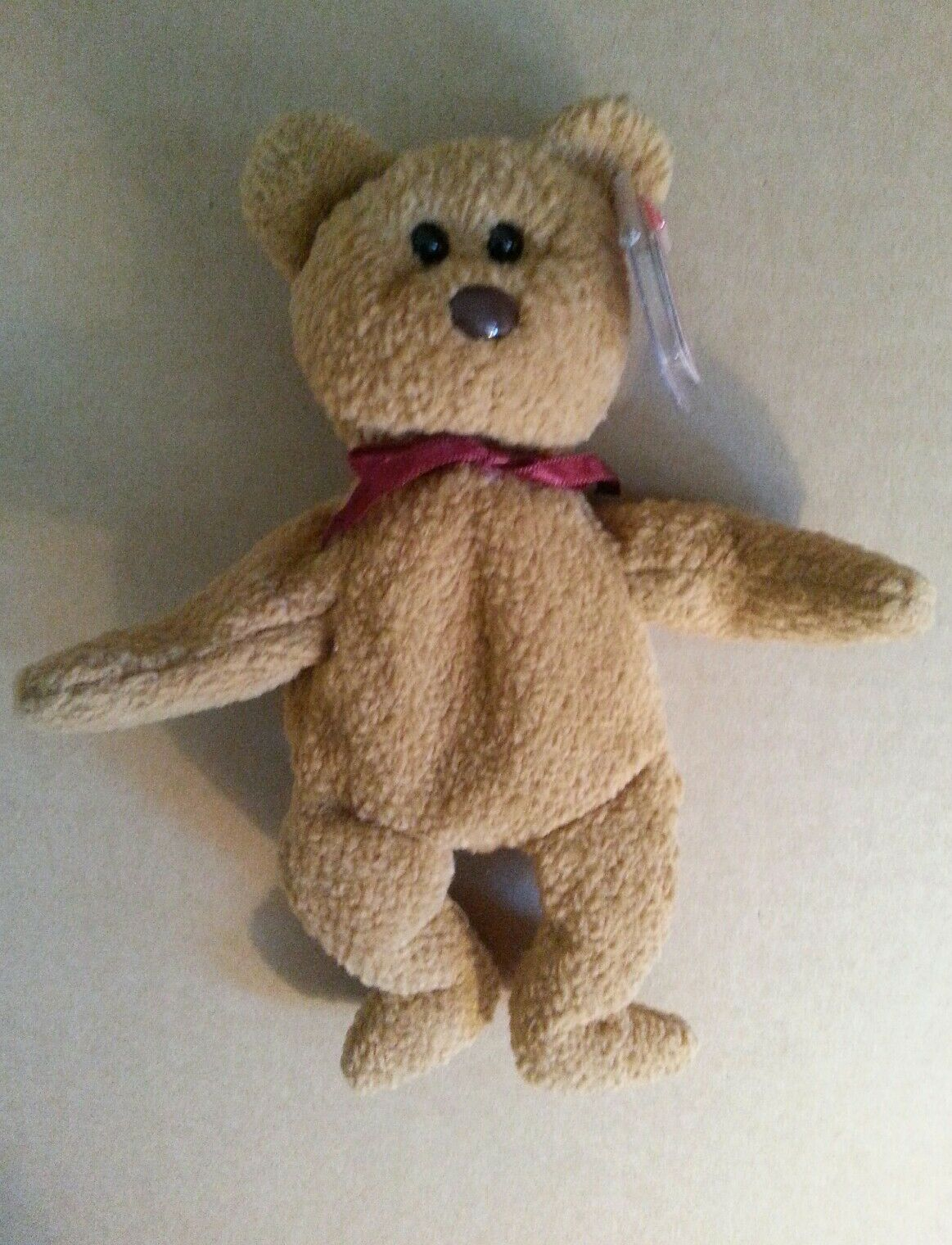 Ty Beanie Baby 1996 Curley Bear  Rare Collectible Hang Tag Error