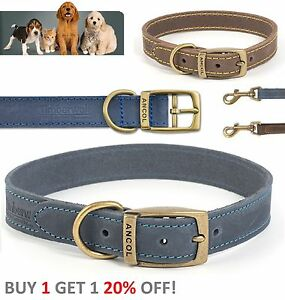 Ancol-Timberwolf-Leather-Dog-Puppy-Collar-Sable-Brown-Blue-Navy