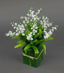 Euro Blüten Kaufen