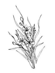 Malbuch 53 Malvorlagen Blumen Nr 4 Ausmalbilder Als Pdf Kinder Malen Ebay