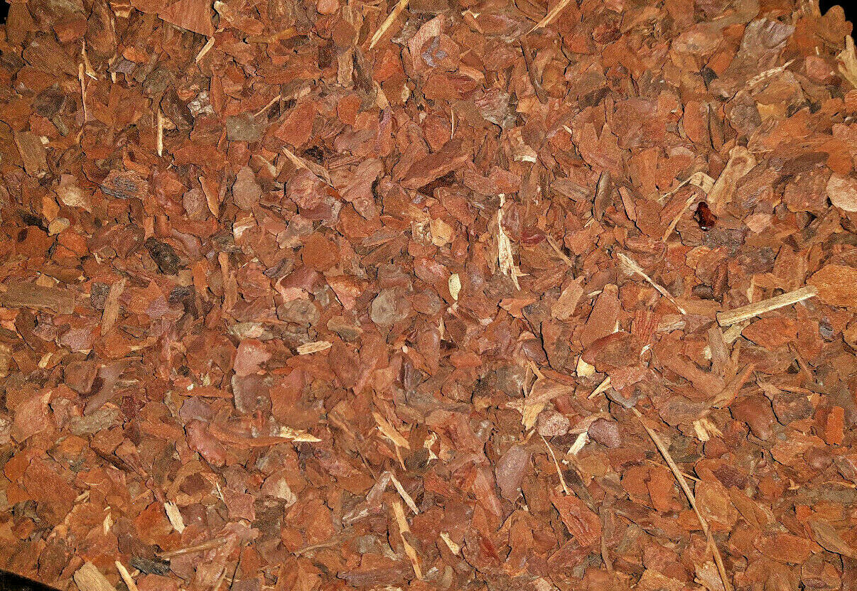 Standard grade organic peat free sustainable orchid bark, potting compost 1litre