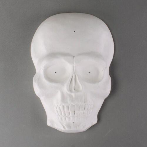 Skull Mask Drape Mold Creative Paradise Glass Fusing Mold #GM214