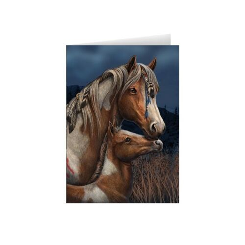 Cards Beautiful Blank Apache Indian Horse With Youngster Cards Very Popular