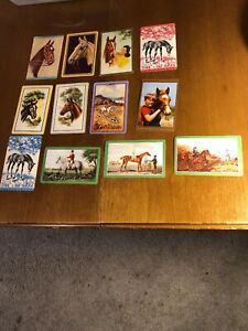 12-Vintage-Swap-Playing-Trading-Cards-Horses-Horse-Card