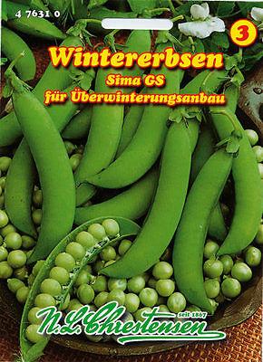 Wintererbsen 'Sima GS' - Pisum sativum Erbsen Erbsensamen Wintererbse 476310