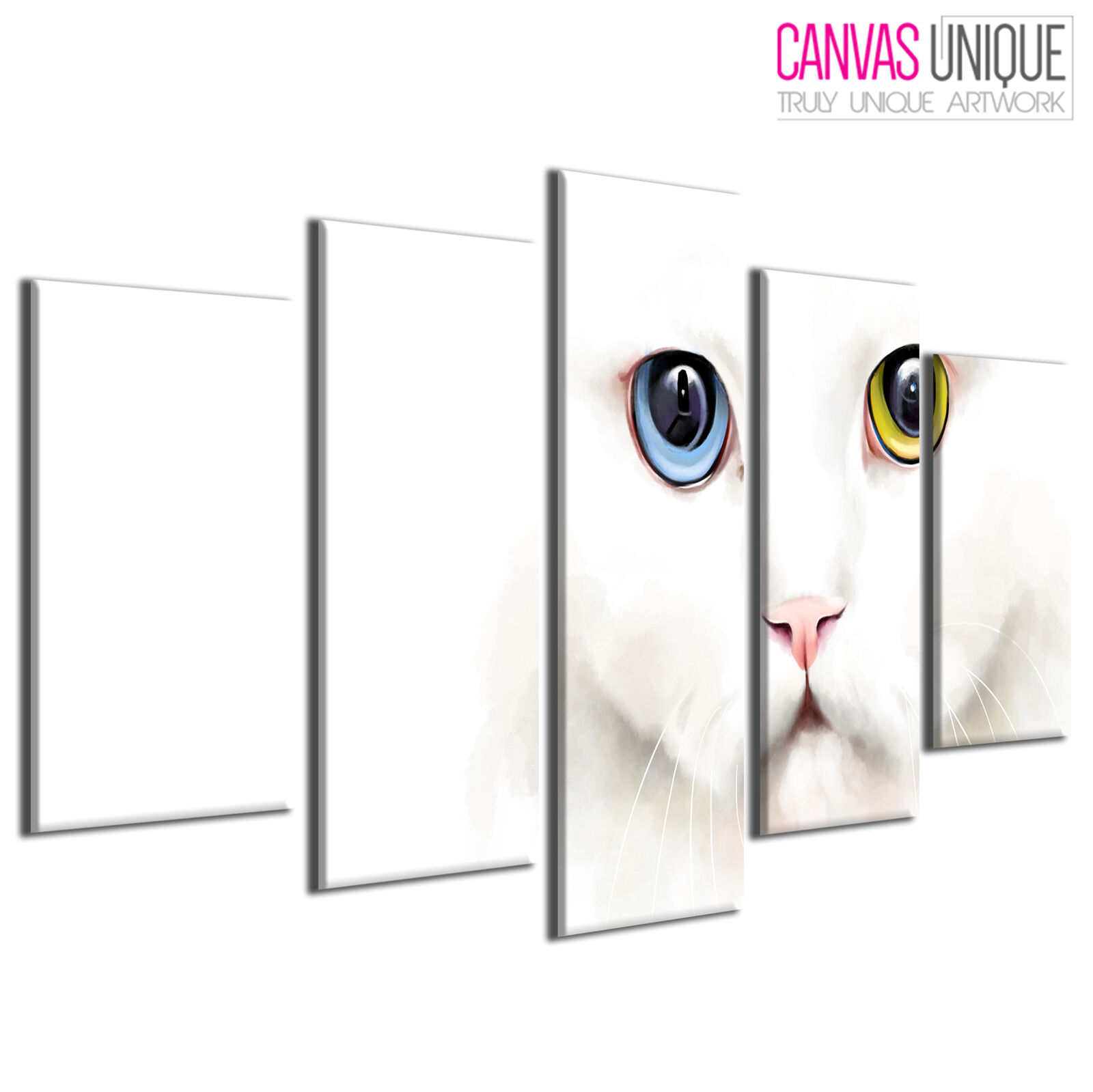 5PA446 Blau Gelb Heterochromia Cat Animal Multi Frame Canvas Wall Art Print