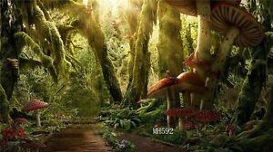 20X10FT Forest Mushroom Vinyl Photography Backdrop Background Studio Props MH592